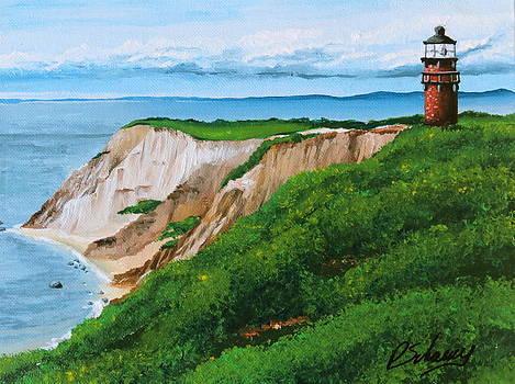 Martha's Vineyard Lighthouse by Paul Schoenig