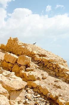 Masada by Leesa Toliver
