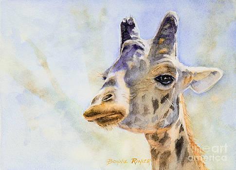 Masai Giraffe by Bonnie Rinier