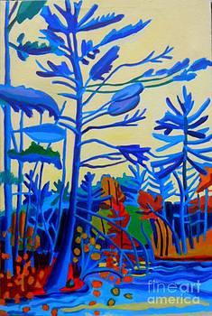 Massapoag Sabbatical by Debra Bretton Robinson