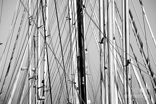 Masts 1 by Alan Oliver