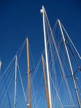 Masts by Leena Pekkalainen