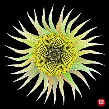 MATH sunflower by GuoJun Pan