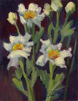 Diane McClary - Matilija Poppies