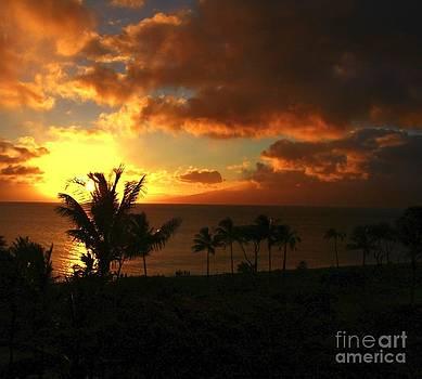Maui Sunset by Max  Greene