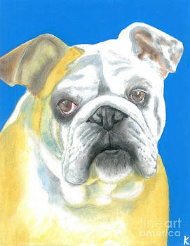 Bulldog by Aaron Koster
