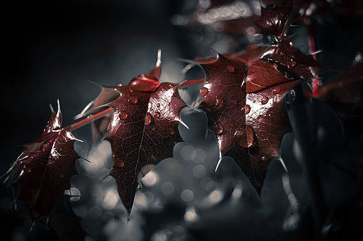 May The Rain Wash Away The Pain by Jen Baptist
