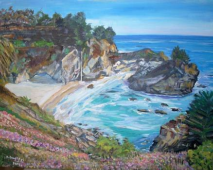 McWay Falls by Teresa Dominici
