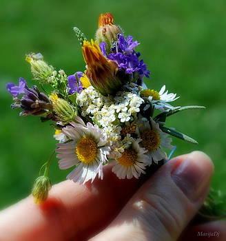Meadow bouquet by Marija Djedovic