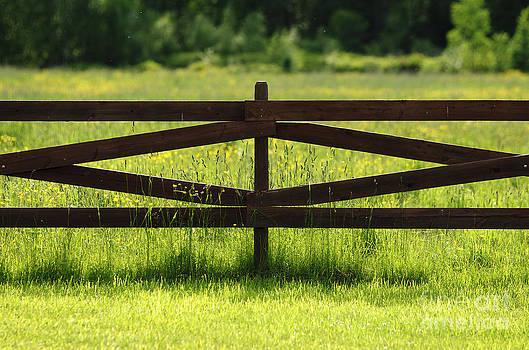 Meadow Fence by Danny Motshagen