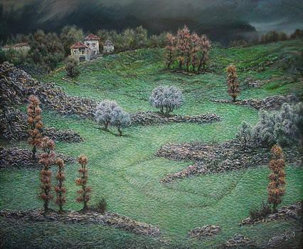Meadows of Iba by Lazar Taci