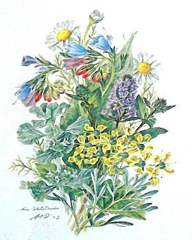 Medicine Herbs by Wide Awake Arts