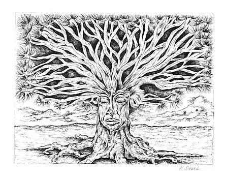 Meditation Tree by Karen Sirard