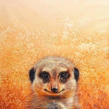 Meerkat's smile by Elena Kolotusha