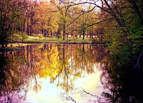 Memorial Park - Henry County by Mark Orr