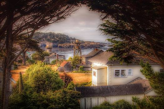 Mendocino View by Michael Fahey