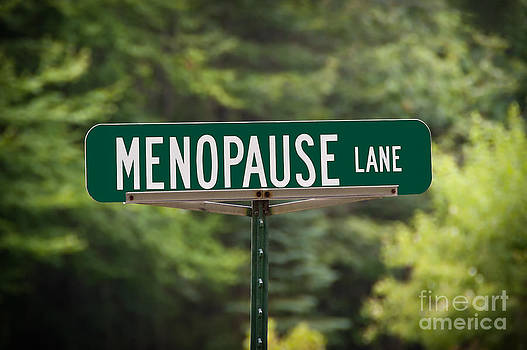 Menopause Lane Sign by Sue Smith