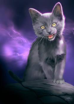 Meow by Bernadett Kovacs