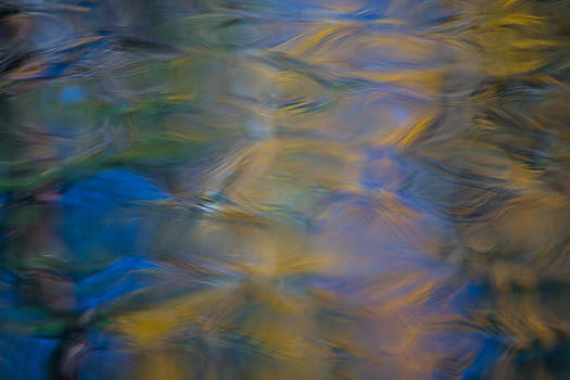 Larry Marshall - Merced River Reflections