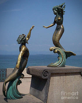 Mermaid in Bronze by Don Fleming