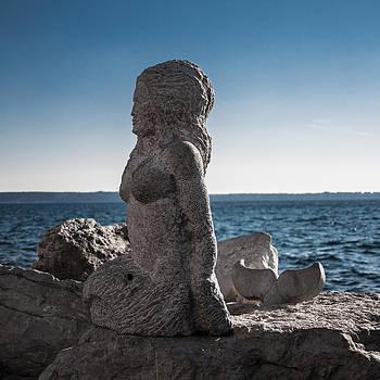 Mermaid by Nina Peterka