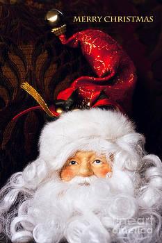 Merry Christmas by Joan Bertucci