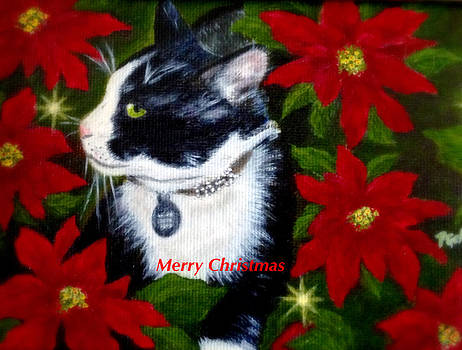 Merry Christmas Kitty by Dr Pat Gehr