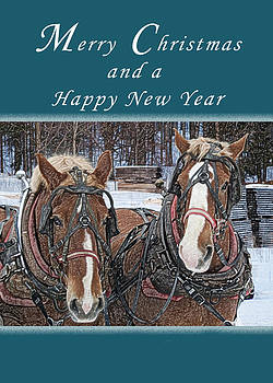 Michael Peychich - Merry Christmas Work Horses
