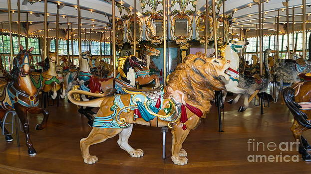 Wingsdomain Art and Photography - Merry Go Around DSC2966