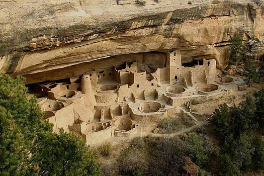 Mesa Verde by Laurie Penrod