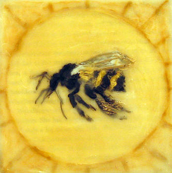 Message of the Bees 2 by Janelle Schneider