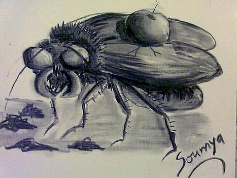 Metamorphosis by Soumya Bouchachi