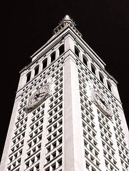 Metropolitan Life Insurance Tower by Liza Dey