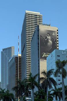 Lynn Palmer - Miami Sunset Blues