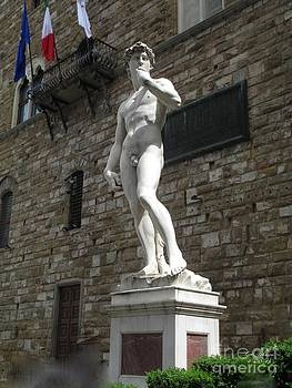 Michelangelo's David by Terri Johnson