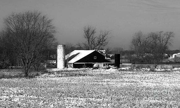 Gregory Dyer - Michigan Farm