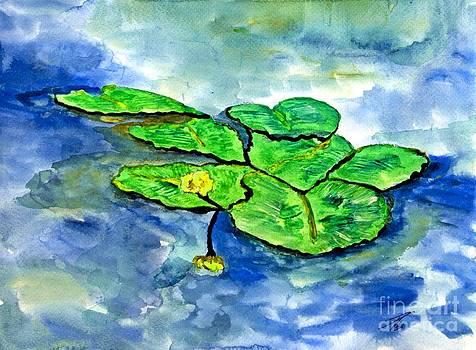 Angela Pari  Dominic Chumroo - Michigan Lilies