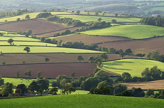 Mid Devon fields by Pete Hemington