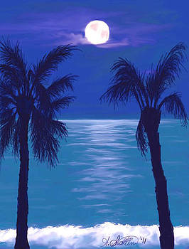 Midnight in the Tropics by Amy Scholten