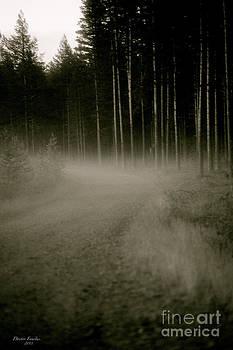 Midsummer Night's Mystery at Sweden july 2013. by  Andrzej Goszcz