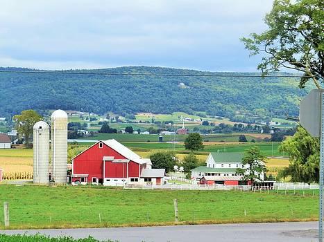 Mifflin County PA Farm by Jeanette Oberholtzer