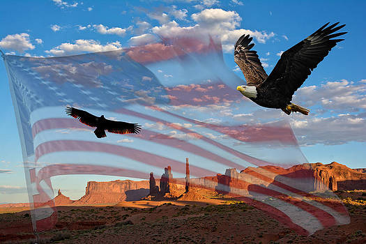 Randall Branham - MIGISI eagle NINOVAN our home