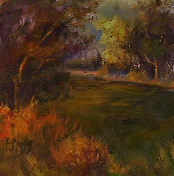 Mike's Marsh by Patricia Elliott Seitz
