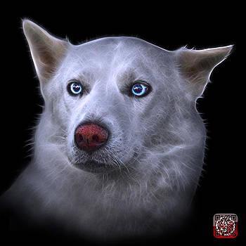 Mila - Siberian Husky - 2103 - BB by James Ahn