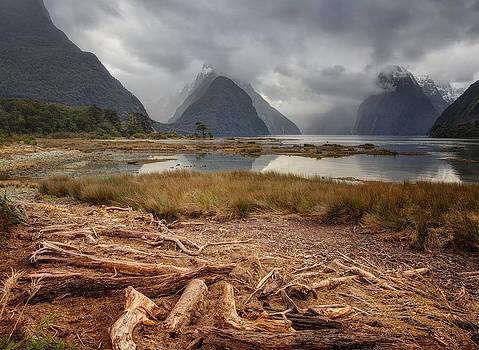 Milford Sound by Kim Andelkovic