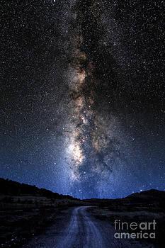 Larry Landolfi - Milky Way