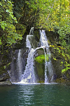 Mill Creek Falls by Susan Leggett