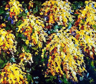 Mimosa by Olga Kurzanova