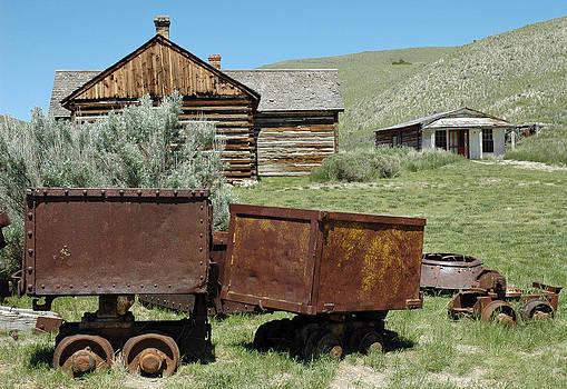 Mining Rail Cars Bannack Montana by Bruce Gourley