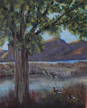 Minnesota Mississippi Marsh by Shirley Watts